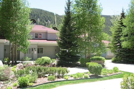 Walk to Peru Chairlift!  Cozy 1 bed Condo - Dillon
