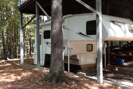 Little camper in the BIG woods - Cottondale