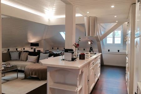 Best loft in Geneva - Apartmen