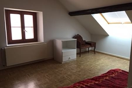 Good value for money, lovely room for 2 persons - Montreux - Lägenhet
