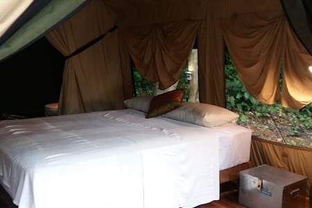 Perhentian Jungle Safari Tent 3 - Sátor