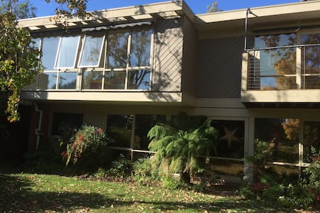 Toad Hall at Frog Hollow B & B - Camberwell - Bed & Breakfast