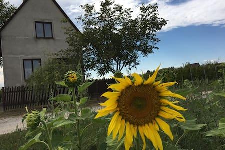 Nyugalom szigete a szőlőhegyen - Marcelháza - Hytte