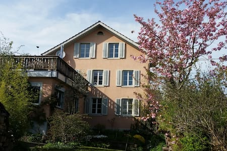 Sunny and lovely apartment - Hinwil - Wohnung