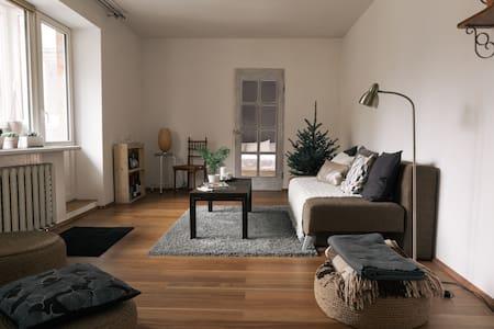 Cozy bright flat nearby oldtown - Vilnius - Apartment