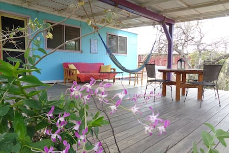 Caribbean Charm in a Natural Garden - Noord