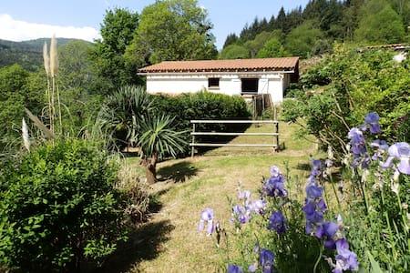 Le Gîte Antoine Parc Naturel Pyrénées Ariégeoises - House