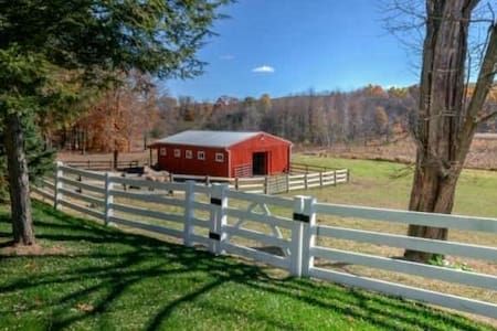 ROOM -FULL APARTMENT on Family Farm - Sparta Township