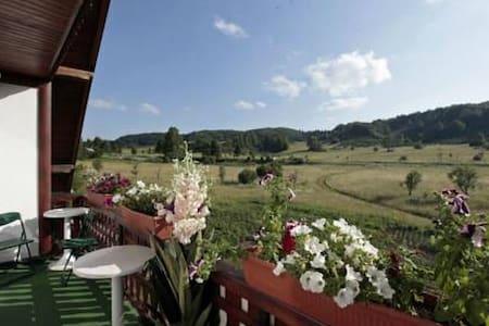 Hotel with Terrace,Restaurant & Mountain View - Jezerce