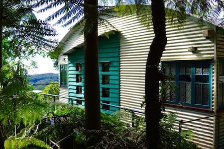 Contemporary Rainforest Retreat  - Springbrook - House