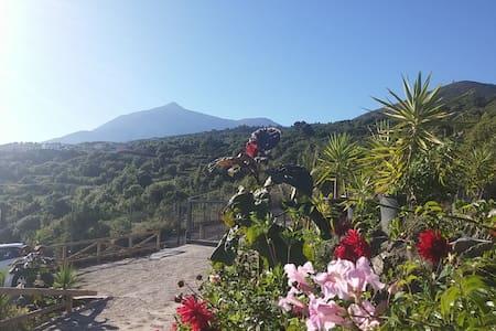 Ecolodge Tenerife Rural 3 - Los Silos - Casa