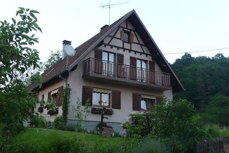 Gîte 5 pers. + bébé au coeur de l'Alsace - Byt