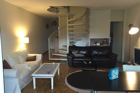 Very beautiful flat 10 minutes from airport - Collex-Bossy