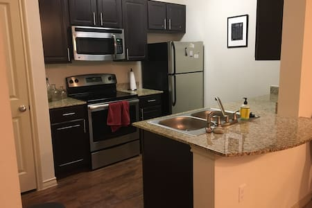 Luxury Apartment for Relaxed Stay in South Austin! - Apartment