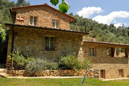 podere cristina  casolare toscano - Camaiore - Villa
