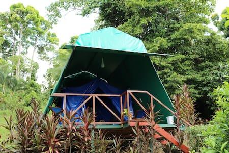 Cabaña de campaña - tent  Eco Hotel - Sátor