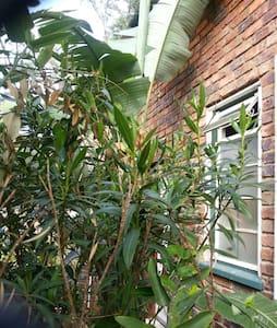 Arty garden Cottage, Moot, Pretoria - Pretoria