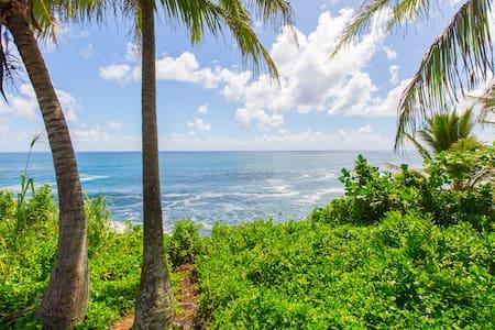 Oceanfront Cottage @ Kehena Beach - Pāhoa - Cabin