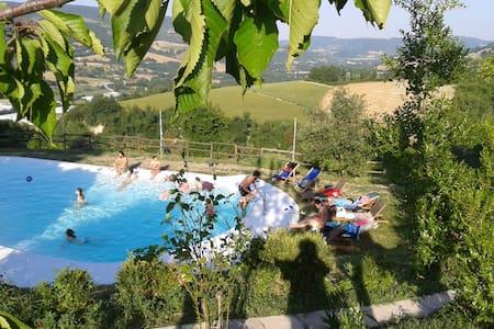 L'agriturismo nel bosco, Natura,relax. - Urbino