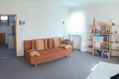 Nichtraucher- 1-Zimmer-Appartement mit Küchenzeile - Apartment