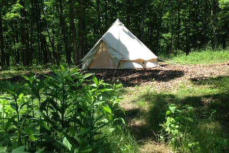 In the forest. Secluded. Glamping. - Mill Creek - Tente