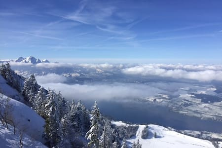 Rigi the place that likes nature - Arth - Wohnung