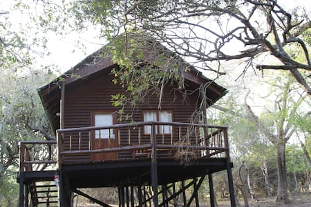 Treehouse in private game reserve - Hluhluwe - Treehouse