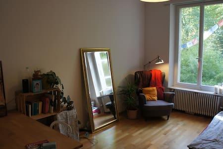 Your own cozy apartment in the heart of Bern - Bern - Condominium