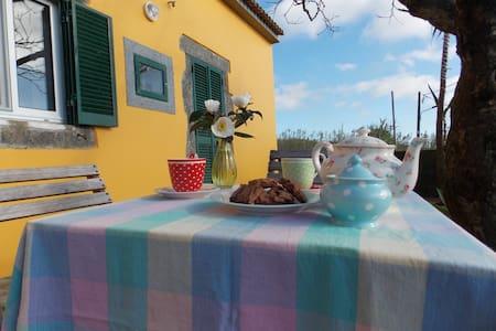 Casa Bouganvillea - Ginetes - Rumah