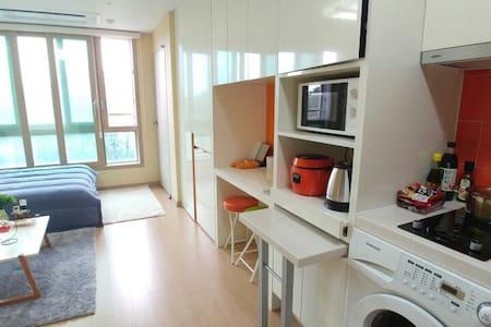센트럴파크 집전체/ whole house/家全体 - Condominium