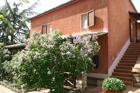 La Casa dei Ciclamini - Frattuccia - House