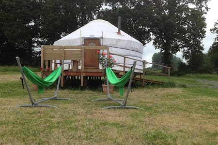 Luxurious Yurt in Private Field - Yurt