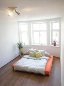 Light Room in A Spacious Art Nouveau Apartment - Riga - Apartamento