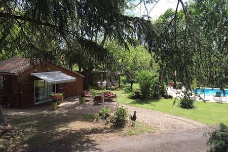 Welcome to Haut Villiers terraces - Vouneuil-sur-Vienne
