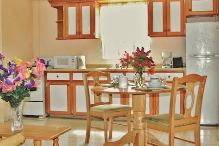 Caribbean Holiday Apartments - Saint John's