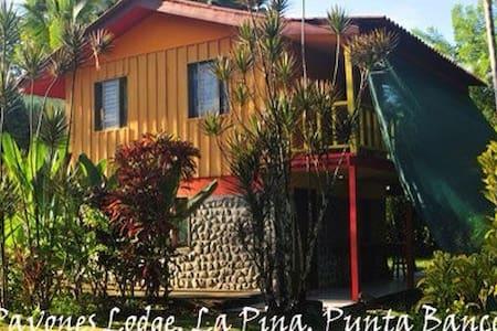 Pavones Lodge La Piña, Beach Front - Pavones - Bed & Breakfast