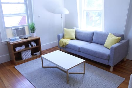 1BR top-floor apt, close to Harvard - Cambridge - Appartement