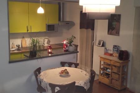 Joli appartement F3 dans quartier calme 5mn centre - Colmar - Lejlighed