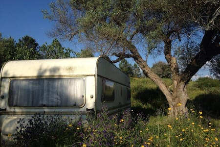 Spacious caravan in rural setting - Altres