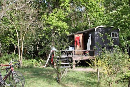 LA SUD woonwagen aan de bosrand - De Koog - Egyéb