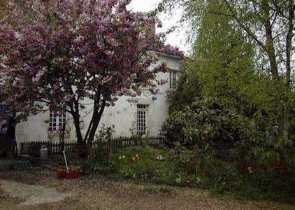 Les Chouettes maison d'hôtes - Treigny - Andet