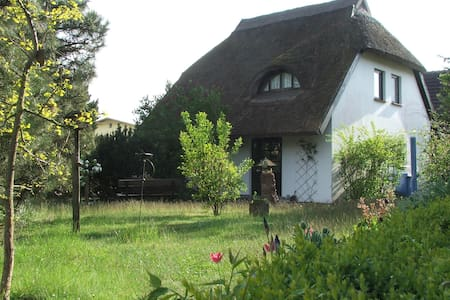 ganzjährig nutzbare Ferienwohnung unterm Reetdach - Baabe Ostseebad