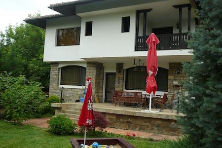 Moni House - Villa