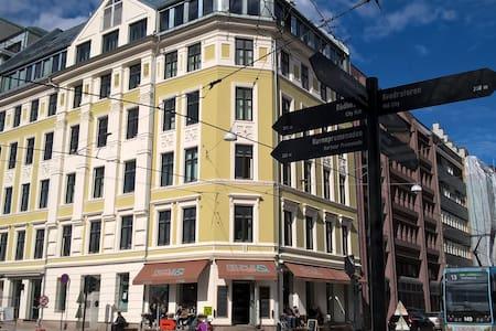 Oslo sentrum - Apartmen
