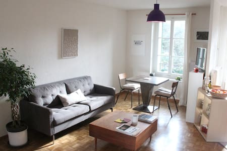 Lovely Room in a -Unique Place-Geneva(Carouge) - Apartment