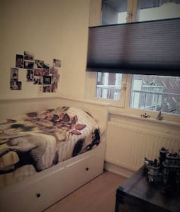 3 rooms appartment in the center - Alkmaar - Apartment