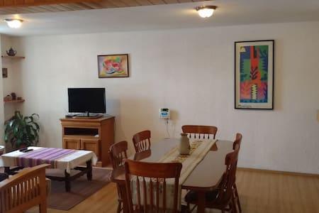 Nice apartment in Villa Coapa, sout - Mexiko-Stadt - Wohnung