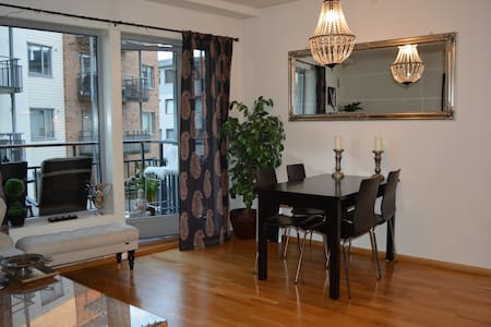 Amazing apartment in central Oslo. - Oslo - Apartment