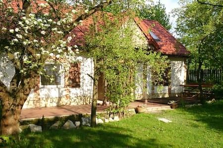 """Farm House """"Nasza Wioska"""" - Siemięrzyce - Apartment"""
