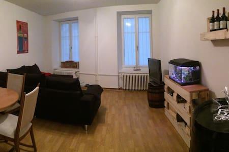Im Herzen Zürich's - Wohnung